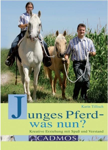 Junges Pferd – was nun?