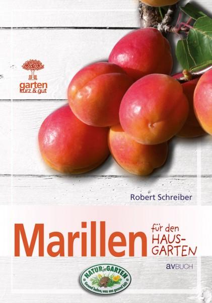 Marillen für den Hausgarten