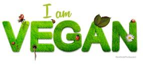 vegan-1091086_640_Comfreak_285