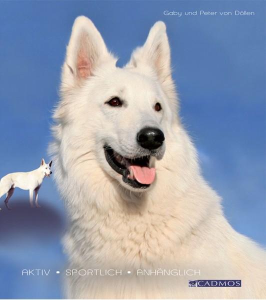 Weiße Schweizer Schäferhunde