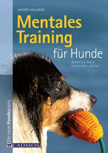 Mentales Training für Hunde