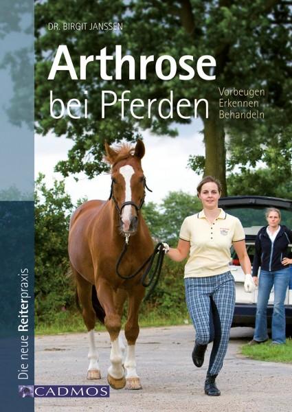 Arthrose bei Pferden
